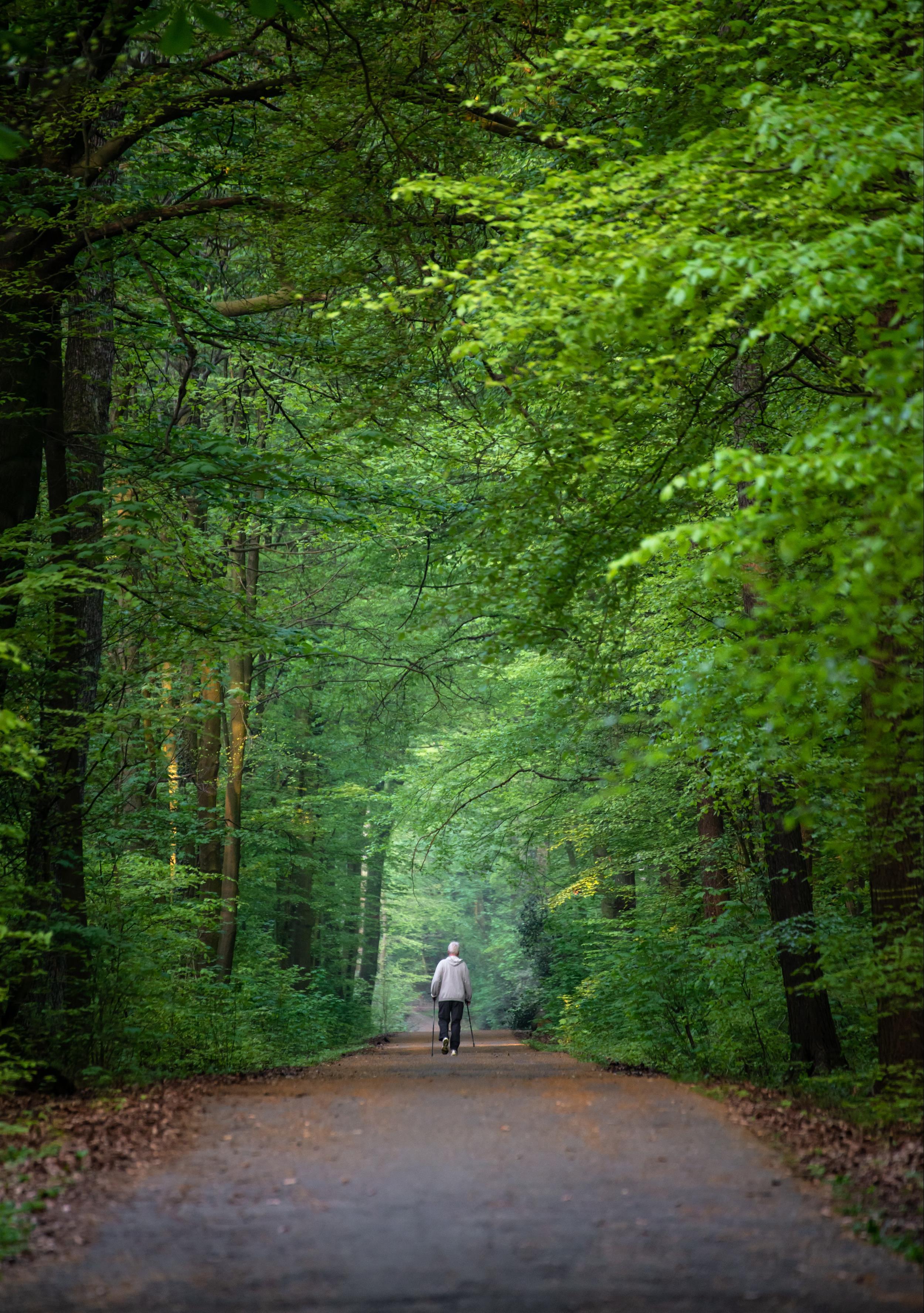 Kalamazoo Valley River Trail